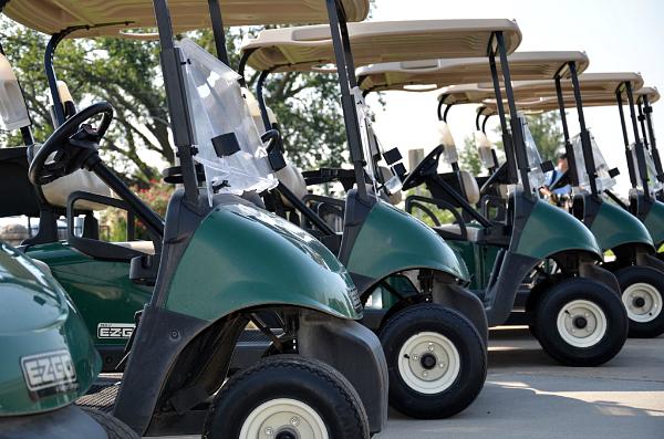 Schiff golf carts