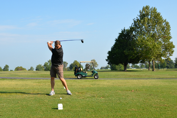 schiff golf swing